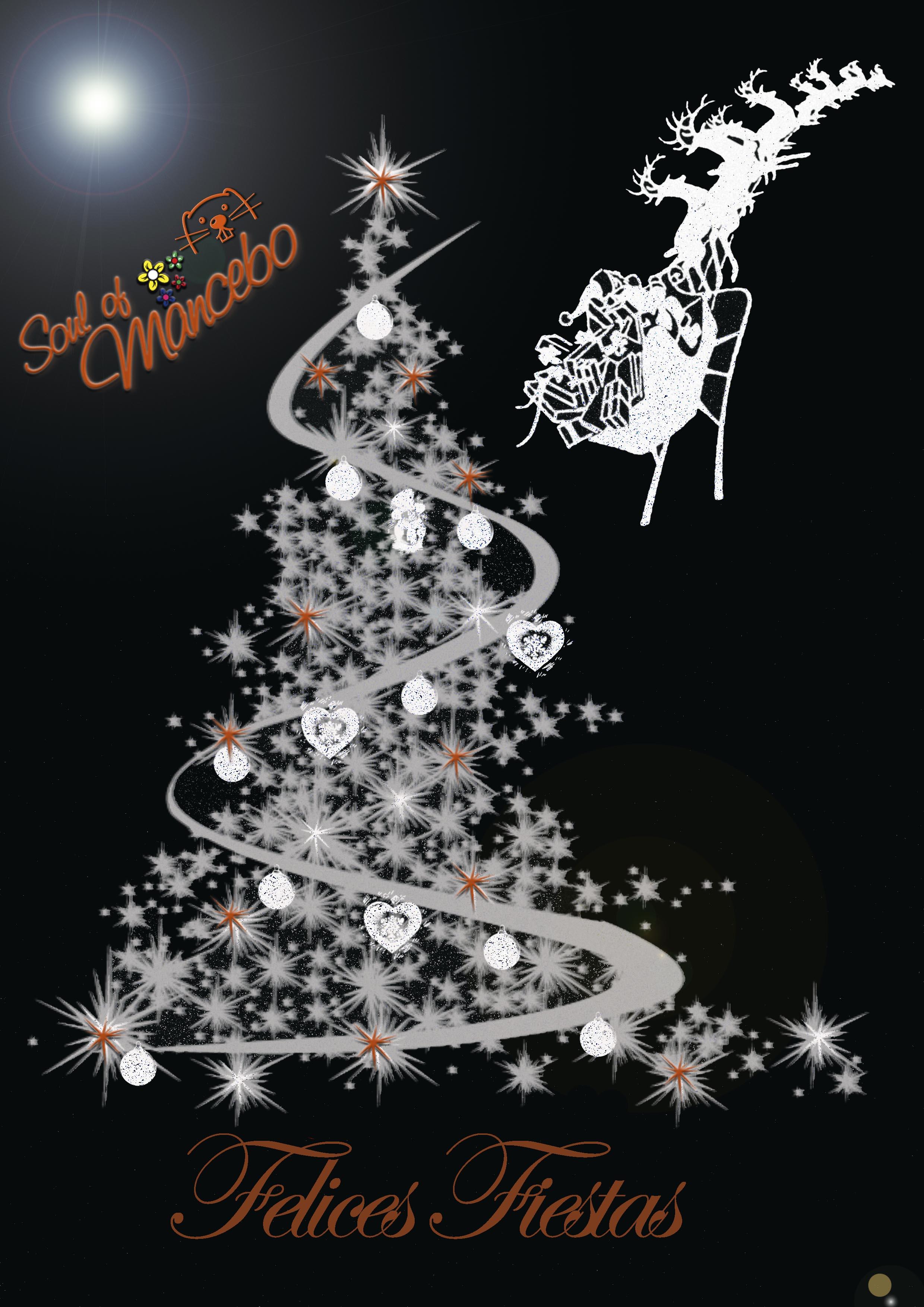 Desde el equipo de Soul Of Mancebo queremos felicitaros la navidad! Deseamos que tod@s disfrutéis de estas fiestas y os deseamos lo mejor para este nuevo año!! Ven a vernos y disfruta comprando!!